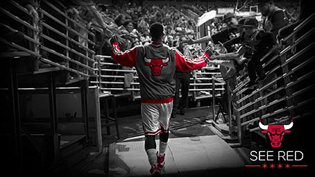 bulls-background