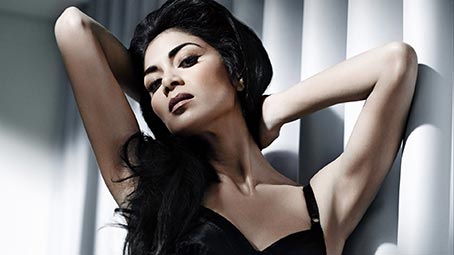 scherzinger-background